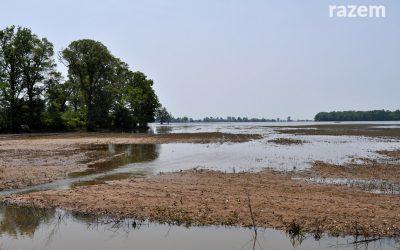 Interpelacja w sprawie zalanych pól i łąk w gminie Łęczyca w dorzeczu Bzury